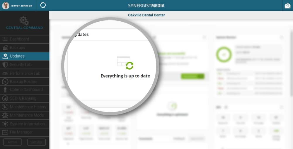 Synergist Media Website Management Updates Dashboard